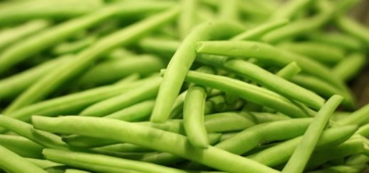 protein rich green beans is best for vegetarians